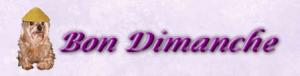 2013-09-23-bon-dimanche-300x76